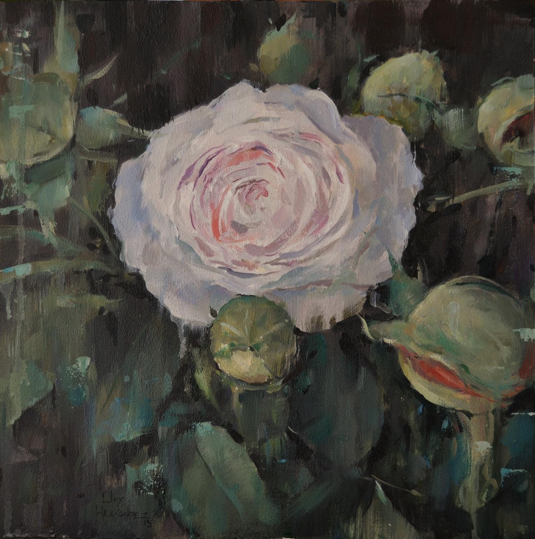 Rosa (Vendido)